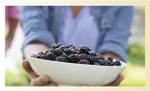 Woman holding a bowl of black berries